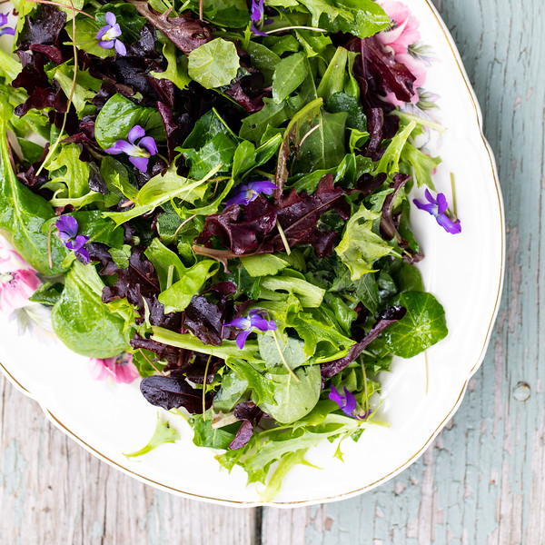 Platter with an herb salad with violet flowers.