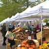 Copley Square Farmers Market 5 x 7