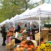 #2 Copley Square Farmers Market 8 x 10
