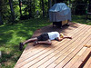"The next morning, Ricky really gets into ""cleaning"" the deck by using his whole body."