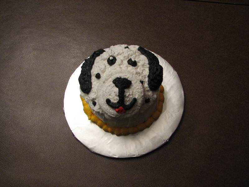Dalmation Cupcake