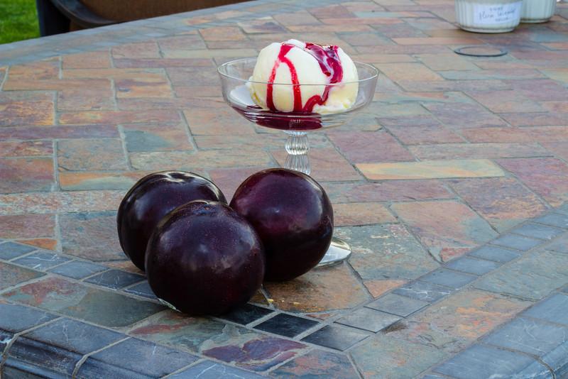 Peggy's Kitchen Summeripe Recipes Plum Dessert Sauce
