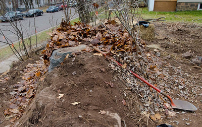 Hugel: trenched, filled with debris, and mounded