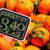 Mandarina's<br /> Madrid<br /> By; Kimberly Marshall