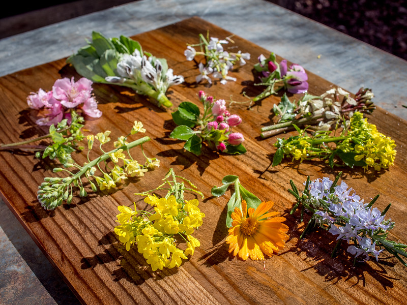 Flowers0415