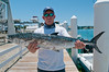 Edible_fish-258