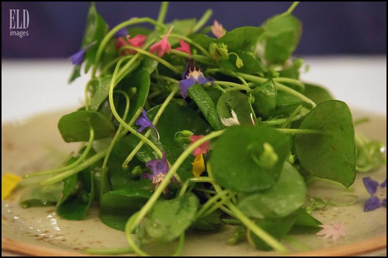 Miner's Lettuce Salad - Cafe Juanita