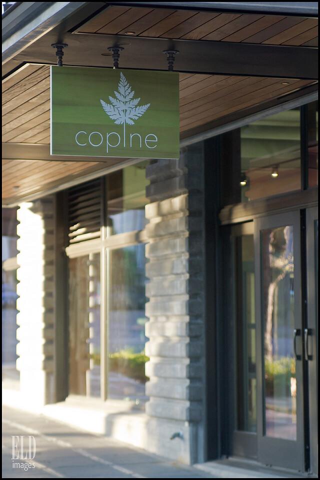 Copine