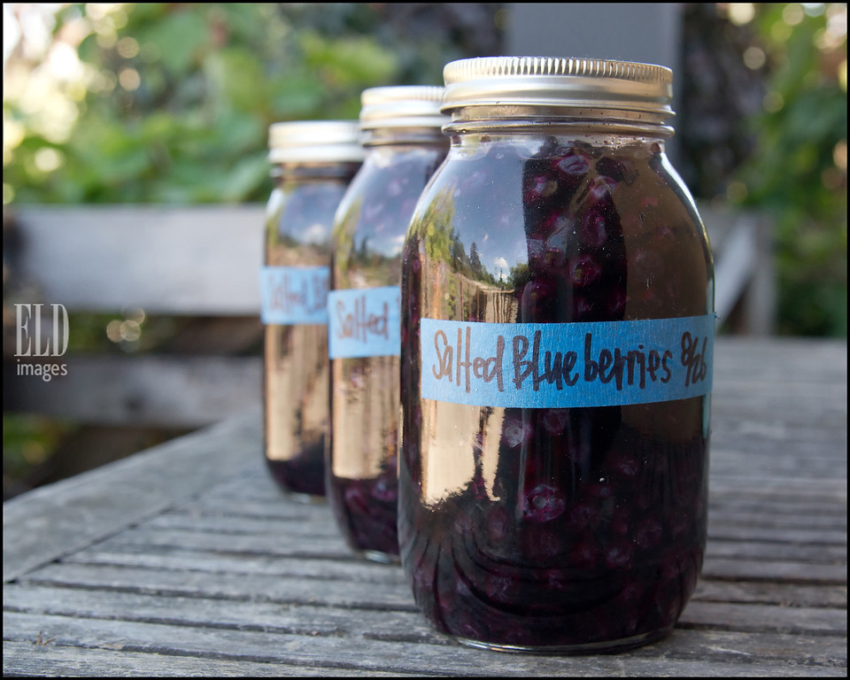Salted Blueberries - Old Chaser Farm