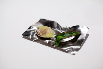 "Clam ""ceviche"" and kalanchoe"