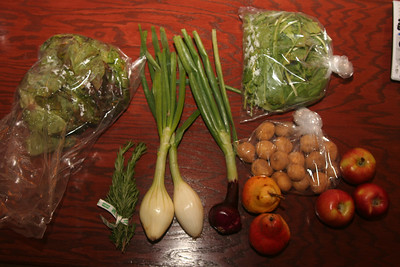 From left to right:  Bag of lettuce, fresh rosemary, spring onions, bag of arugula, yukon potatoes, 2 red pears, 3 braeburn apples