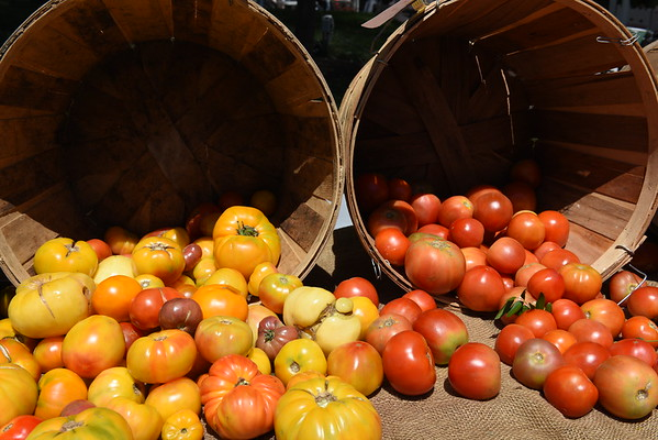 Farmer's Market 2015