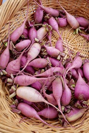 Purple daikon radishes at Square Peg