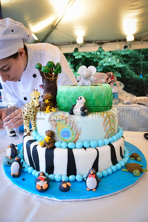 Cake Competition - ZooFari 2013