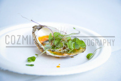 Oyster - ZooFari 2013