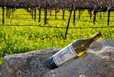 The wine of Arbe Garbe winery in a vineyard next  in Rutherford, Calif.,  is seen on Friday, December 16th,  2011.