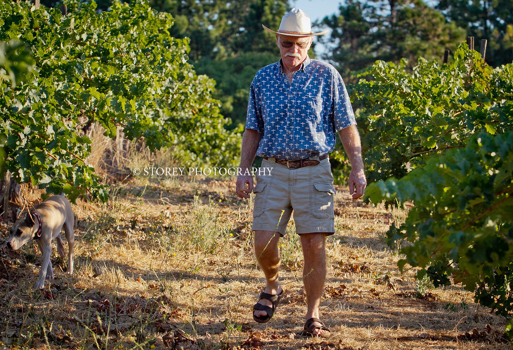"""Randy Dunn walks in his vineyard with his dog """"Dominga"""" in Angwin, Calif., on Thursday, August 16th, 2012."""