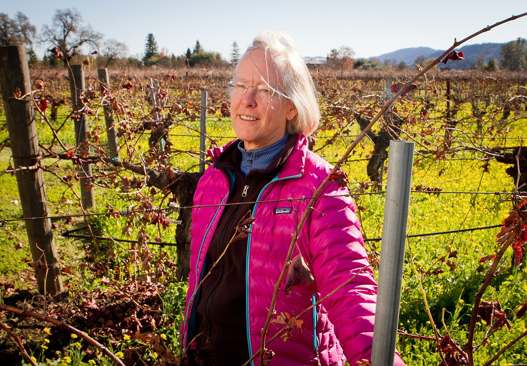 Winemaker Cathy Corison in her Cabernet vineyard behind her winery in St. Helena, Calif., on Friday, December 16, 2011.