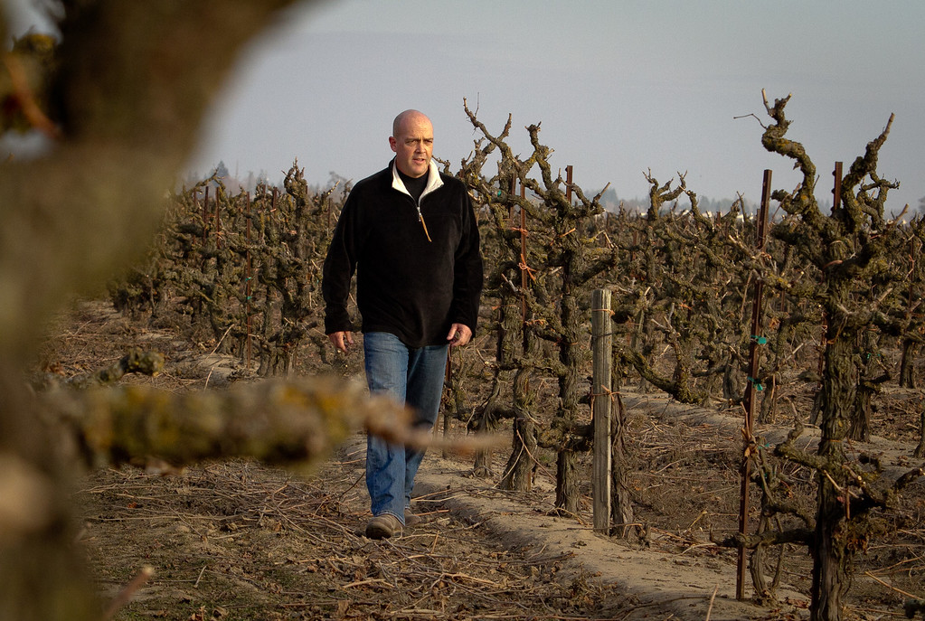 "Winemaker Michael McCay walks in the ""Truluck's"" Old Vine Zinfandel vineyard in Lodi, Calif.,  on Wednesday, December 28th,  2011."