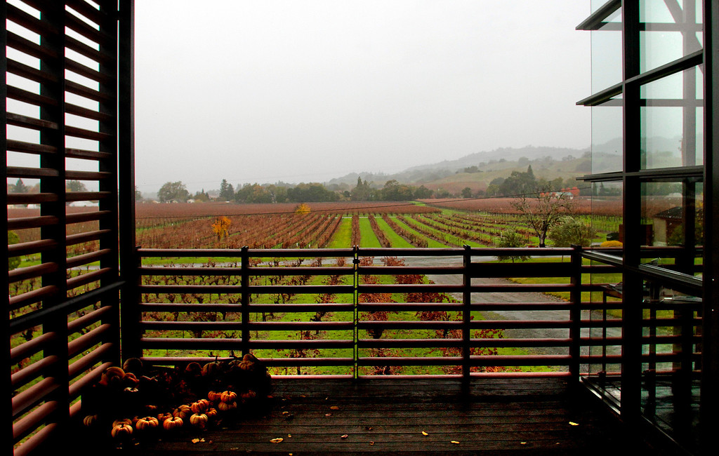 A view of the vineyards from the entrance to the Stryker Sonoma winery tasting room in Geyserville , Calif., is seen on Sunday, Dec. 5, 2010.