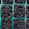 Blackberry Baskets
