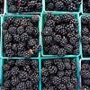 Blackberry Baskets