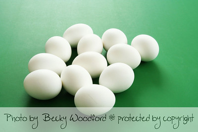 White eggs on green background