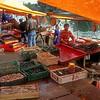 Mariscos for sale  Valdivia Chile