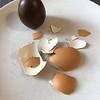 Cracking the egg open