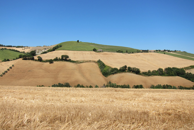 A typical landscape in the area of Monterubbiano.