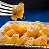 Kids wagonwheel mac and cheese