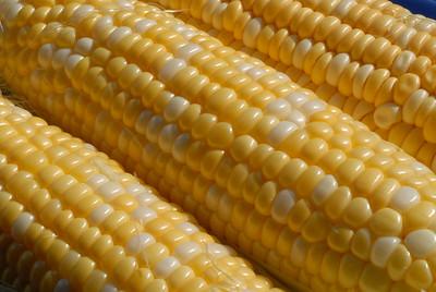 Food_corn_20070721_0009