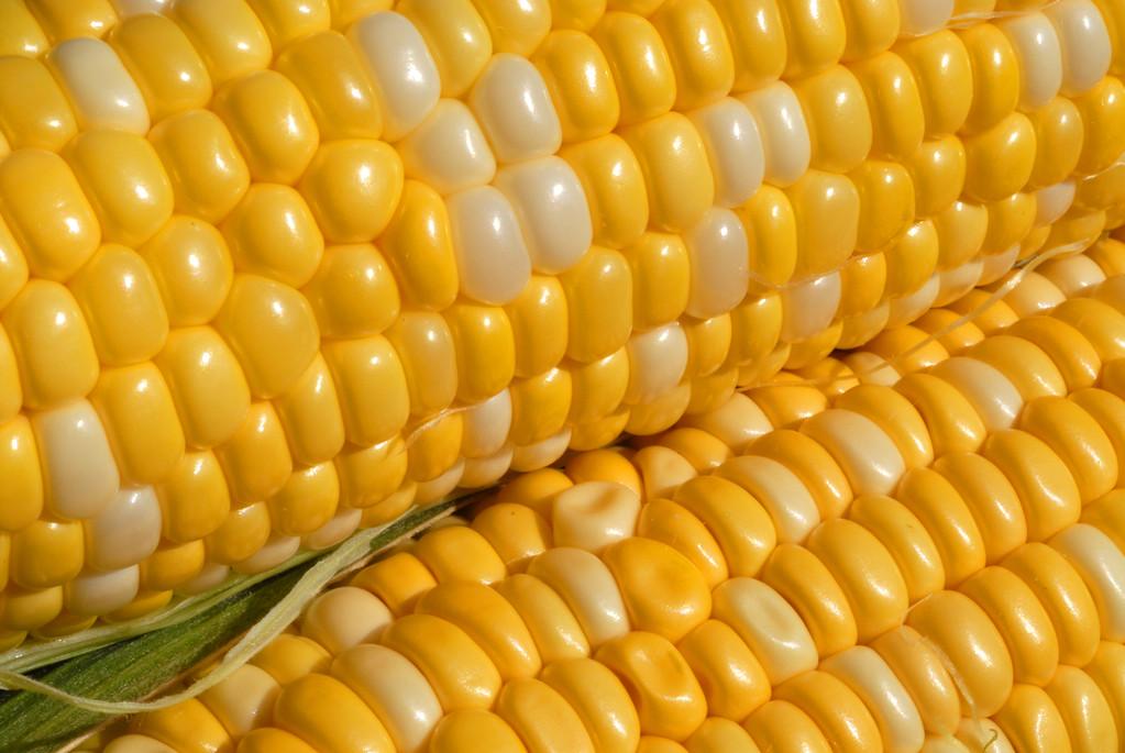 Food_corn_20070721_0020_pp