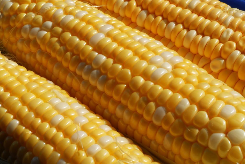 Food_corn_20070721_0009_pp1