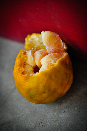 Indian clementine