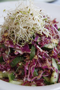 Cucumber, Cabbage and alfalfa salad at Moses