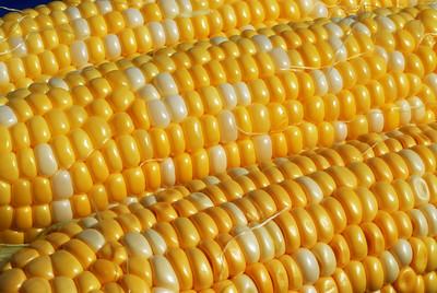 Food_corn_20070721_0013_pp