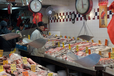A fish store (duh) in Chinatown, NYC
