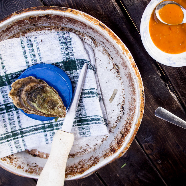 shuck oysters with a hockey puck