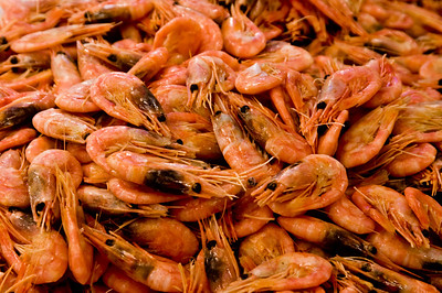 pile of cooked Shrimp with heads