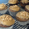 Caramel-apple spice cupcakes, with penuche & topping.