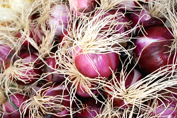 Red onions,Allium
