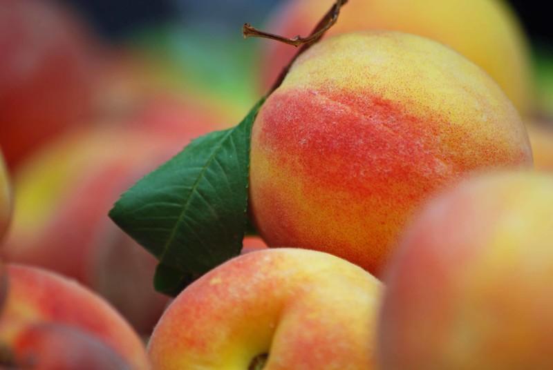 Peach-2267-B