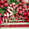 Radishes of all shapes and sizes.