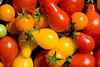 Tomatoes6220 copy