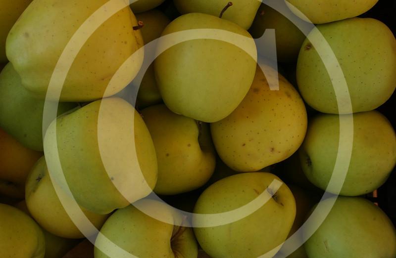 Apples Golden Delicious