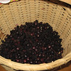 Black raspberries picked at the farm,<br /> July 2010