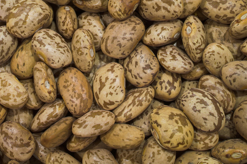 Pinto beans high resolution photo made with Macro 50mm f/2.8 1:1 lens. This image will make nice decoration or illustration for publish.<br /> Image is copyrighted by Stan Pustylnik.