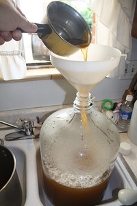 Sparging boiled wort into carboy.