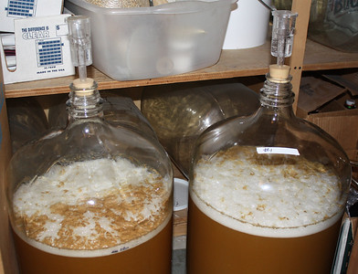 Nice fermenting action the day after the yeast was pitched.